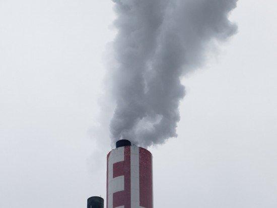 LOVECO zum Thema Klimaneutral