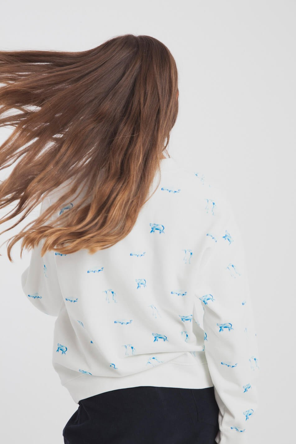 Sweater Antartic Animals Weiss from LOVECO